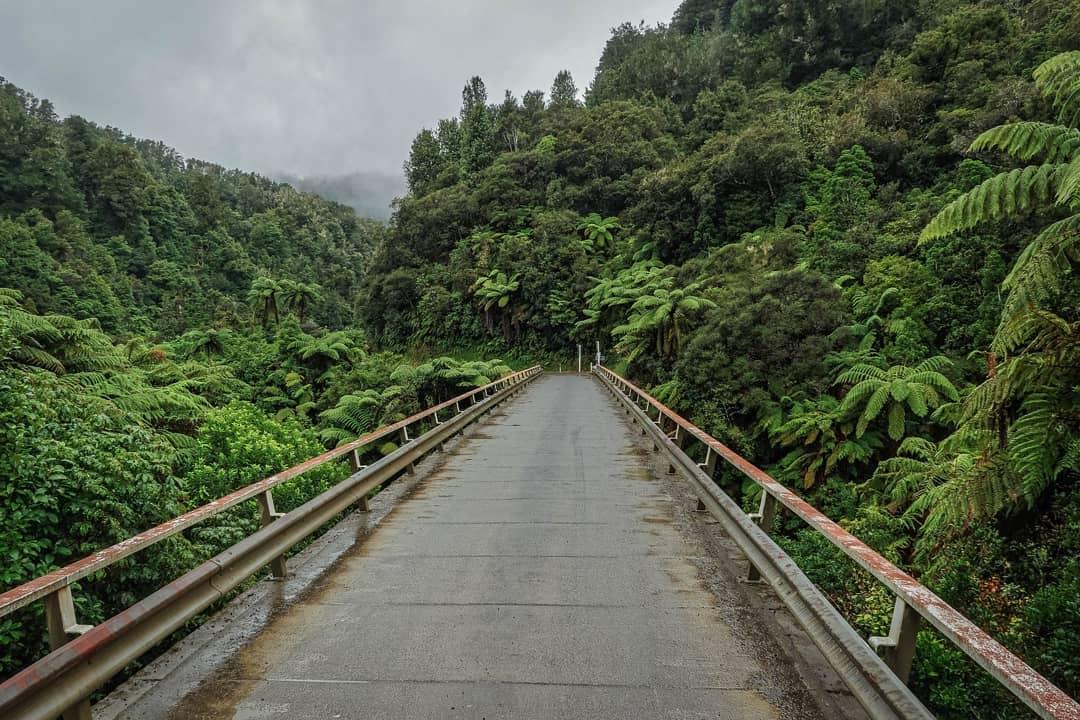 Tangarakau Gorge @beutelthierchen