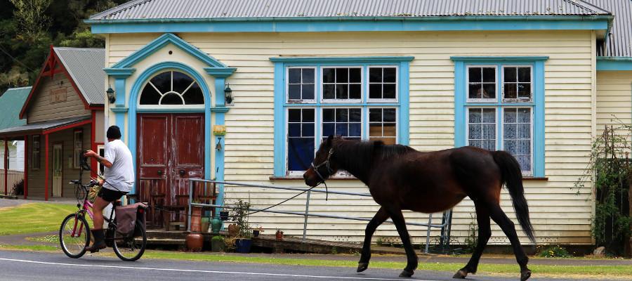 Wangamomona local, New Zealand