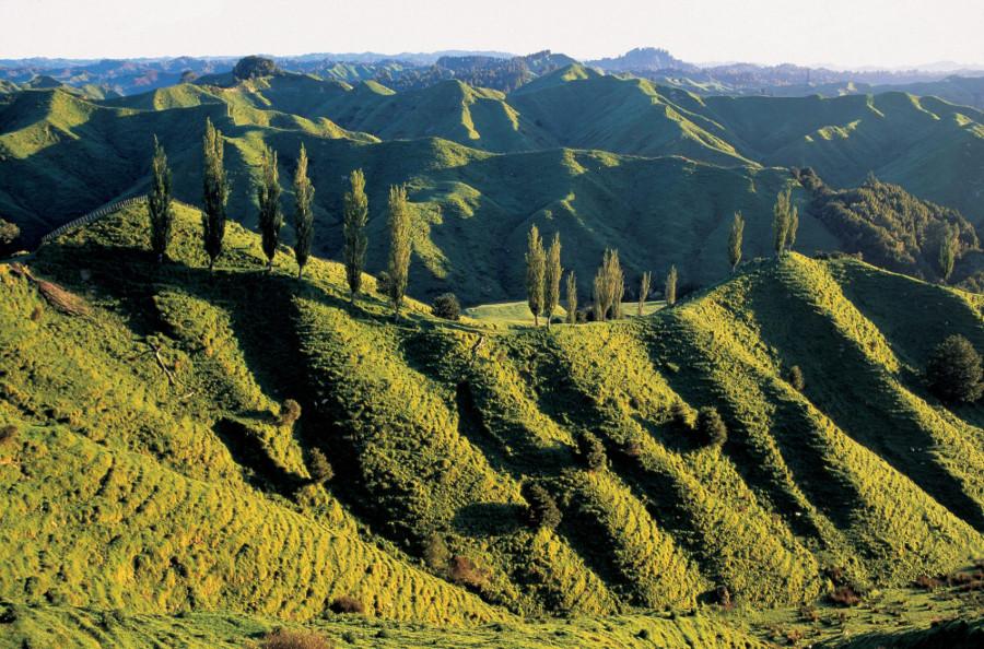 Whangamomona @New Zealand Geographic