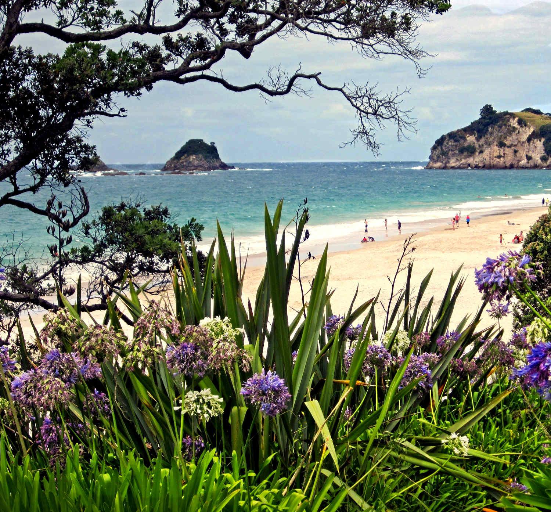 Hahei beach, near Whitianga on the Pacific coast of the Coromandel Peninsula. New Zealand. Image shot 2012. Exact date unknown.