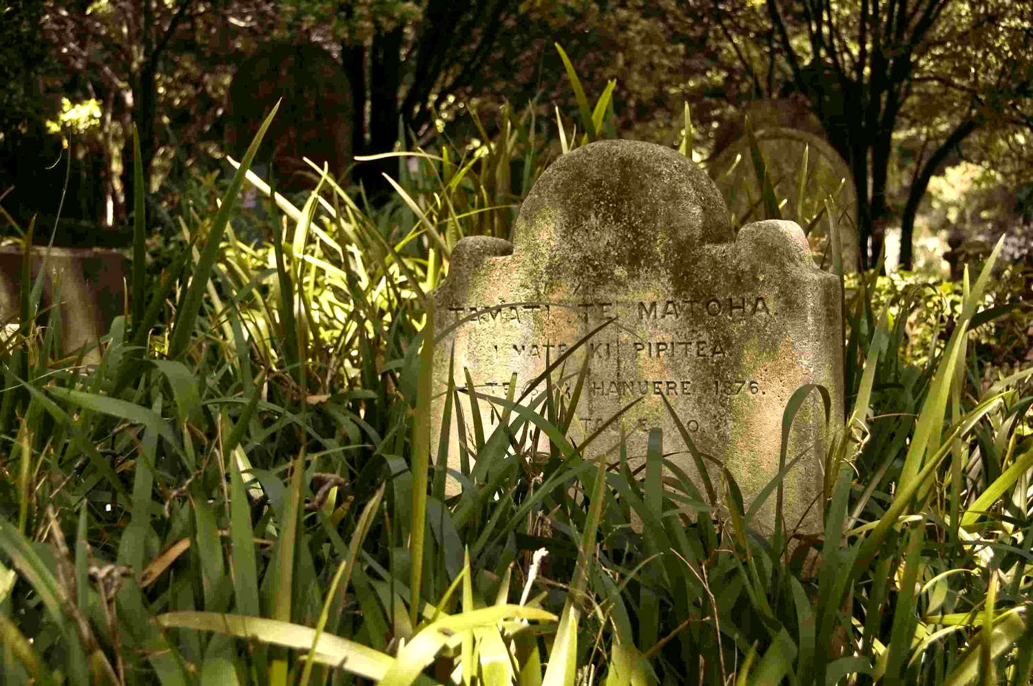 Heritage grave site Wellington with its story
