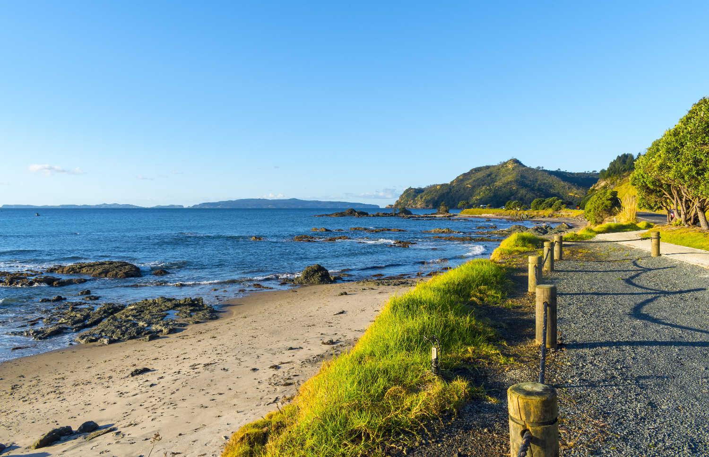 Landscape Scenery Kuaotunu Beach, Coromandel Peninsula New Zealand; During Low Tide