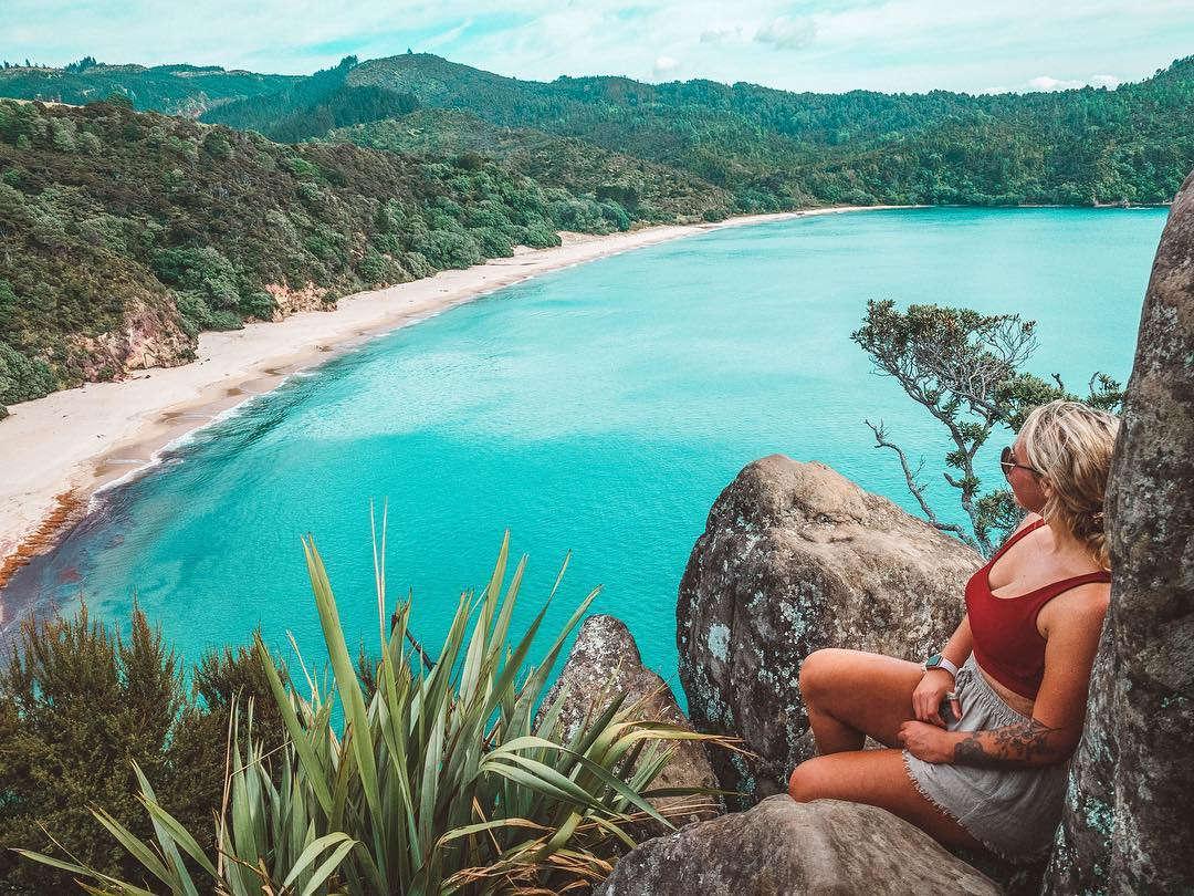 New Chums Beach,Coromandel,New Zealand @hollielovesplants