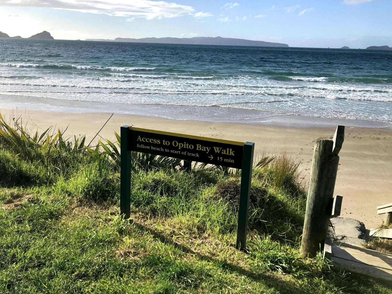 Opito Pa Walk,Coromandel,New Zealand @AllTrails