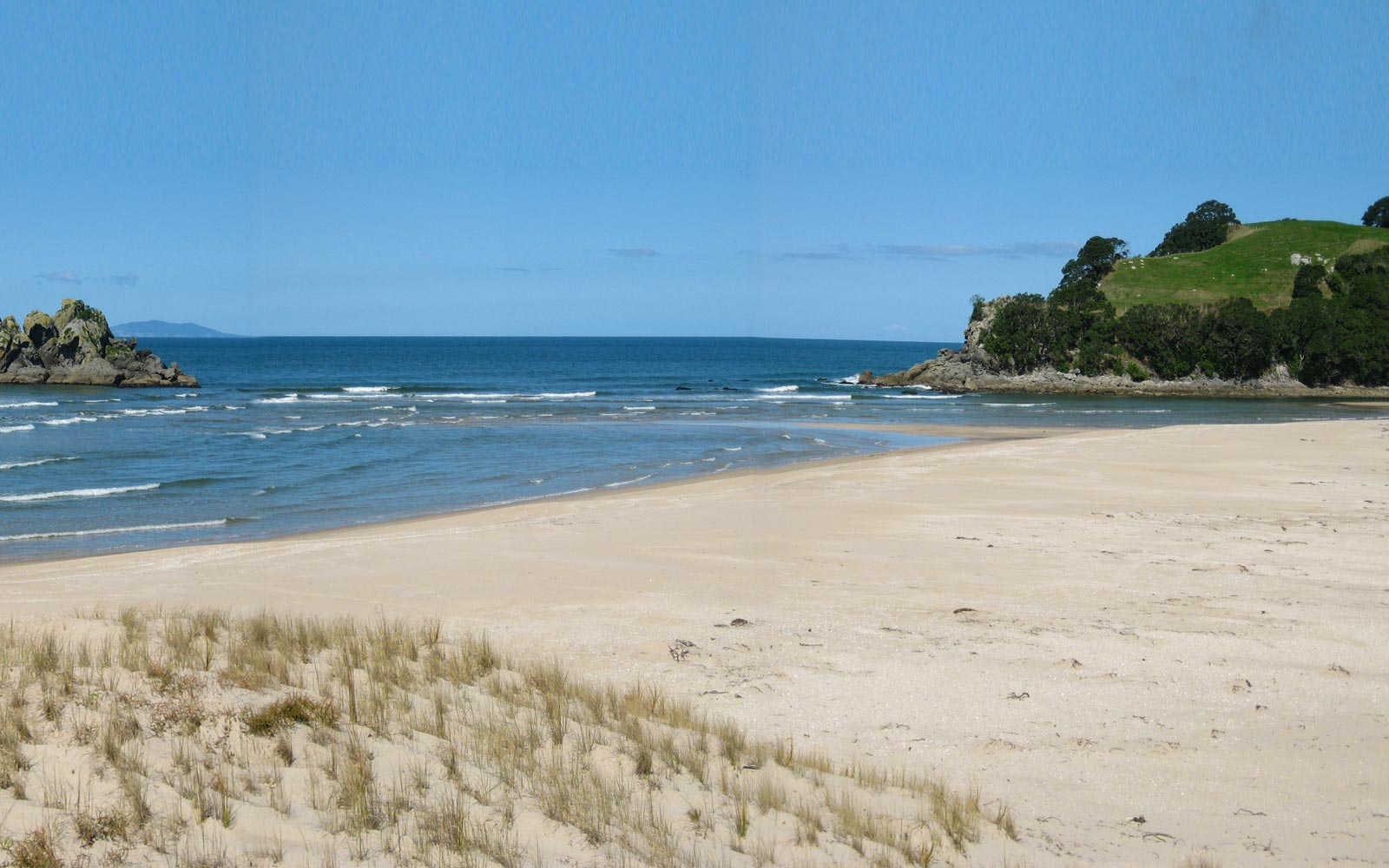 Opoutere Beach,New Zealand @World Beach Guide