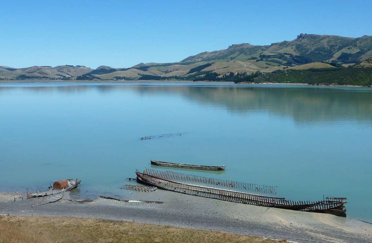 Quail Island Lyttleton Harbour, Christchurch,New Zealand @Doc