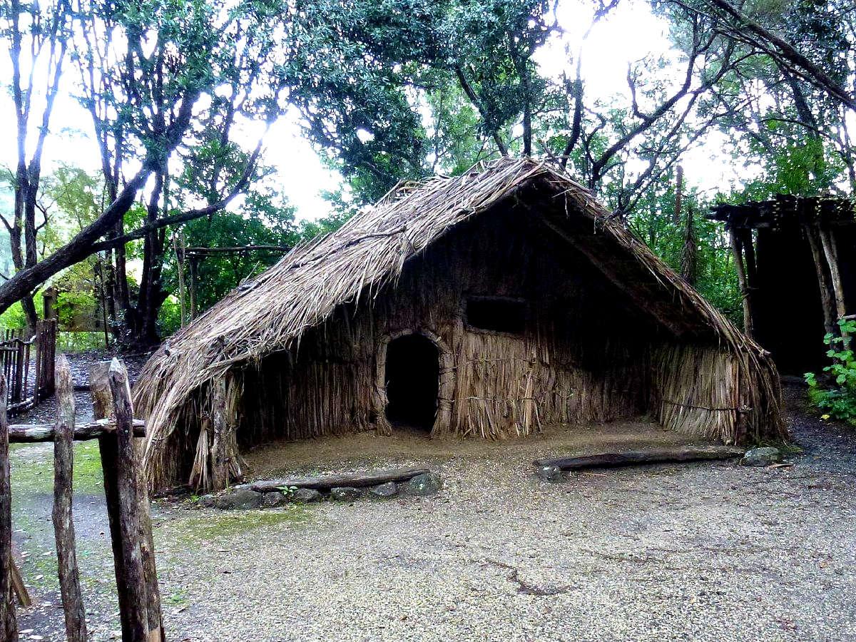 Rewa's Village,New Zealand @TripAdvisor