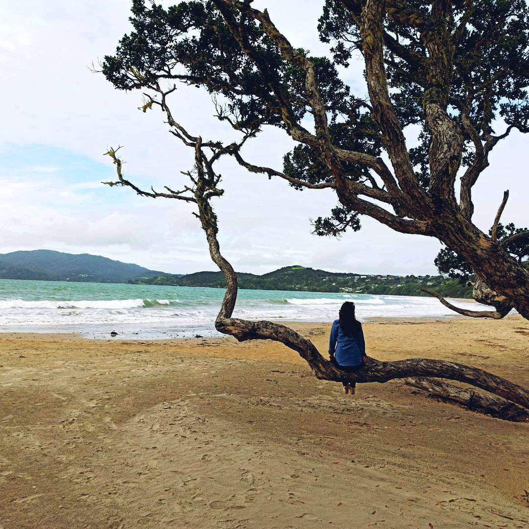Taumarumaru Reserve walk,New Zealand @m_u_e_r_t_a