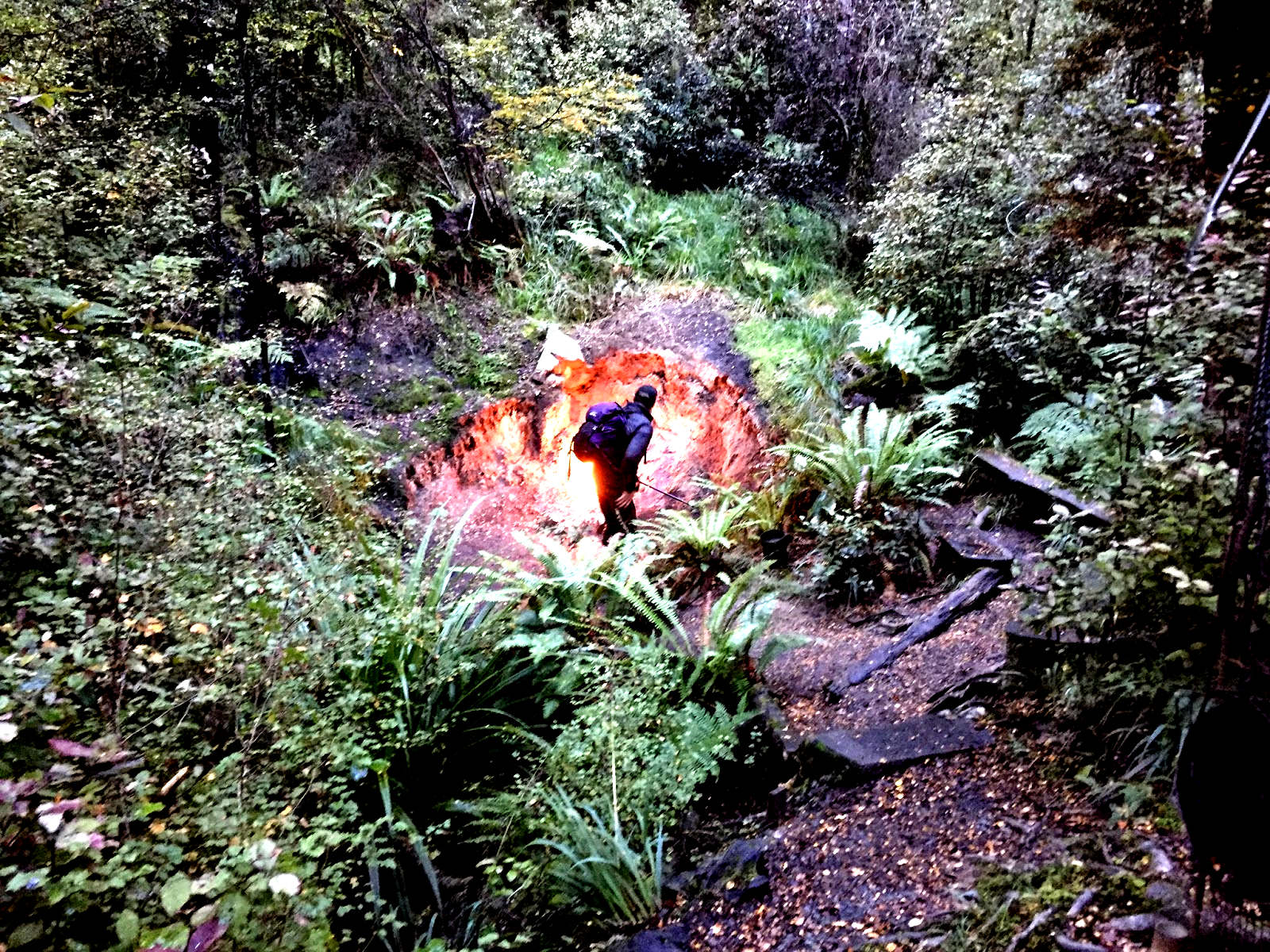 The natural flames of Murchison,New Zealand @avionroads
