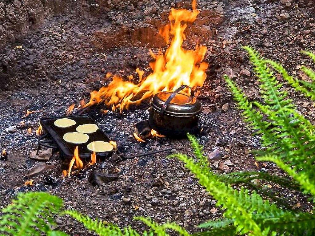 The natural flames of Murchison,New Zealand @truenzwalkingtracks