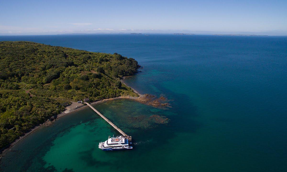 Tiritiri Matangi Island @Fullers