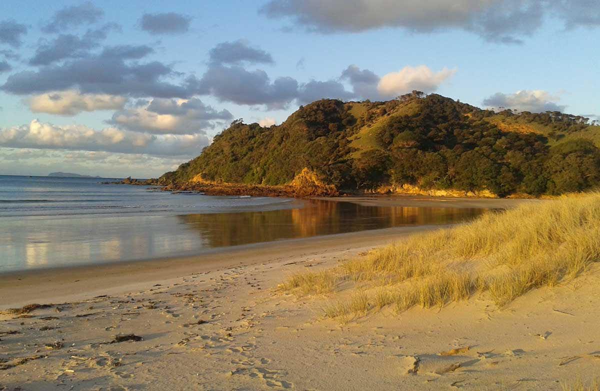 Waikawau Bay & Beach,New Zealand @Doc
