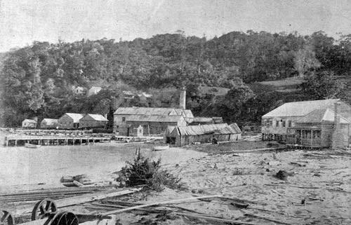Whangapoua timber mill – Hauraki–Coromandel places @Te Ara Encyclopedia of New Zealand