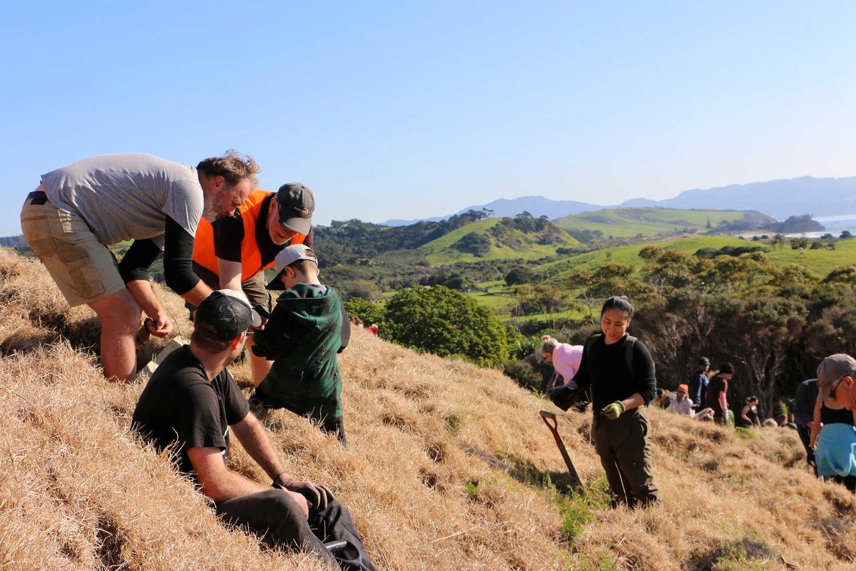 Tawharanui Open Sanctury @TOSSI.NZ