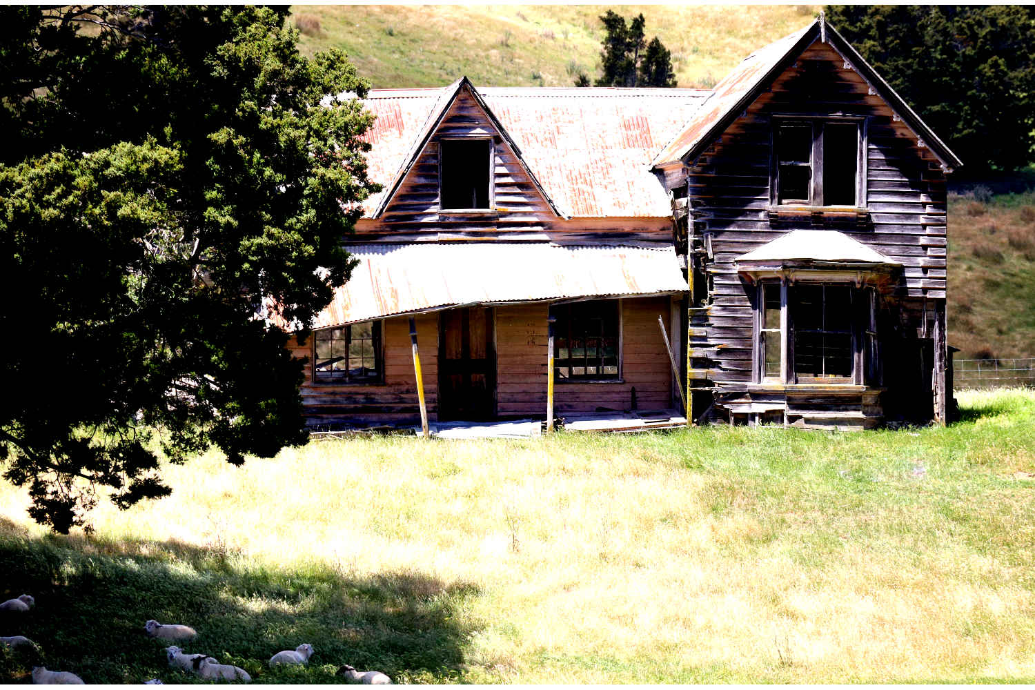 Abandoned farmhouseNelson to Murchison Spring Grove, New Zealand