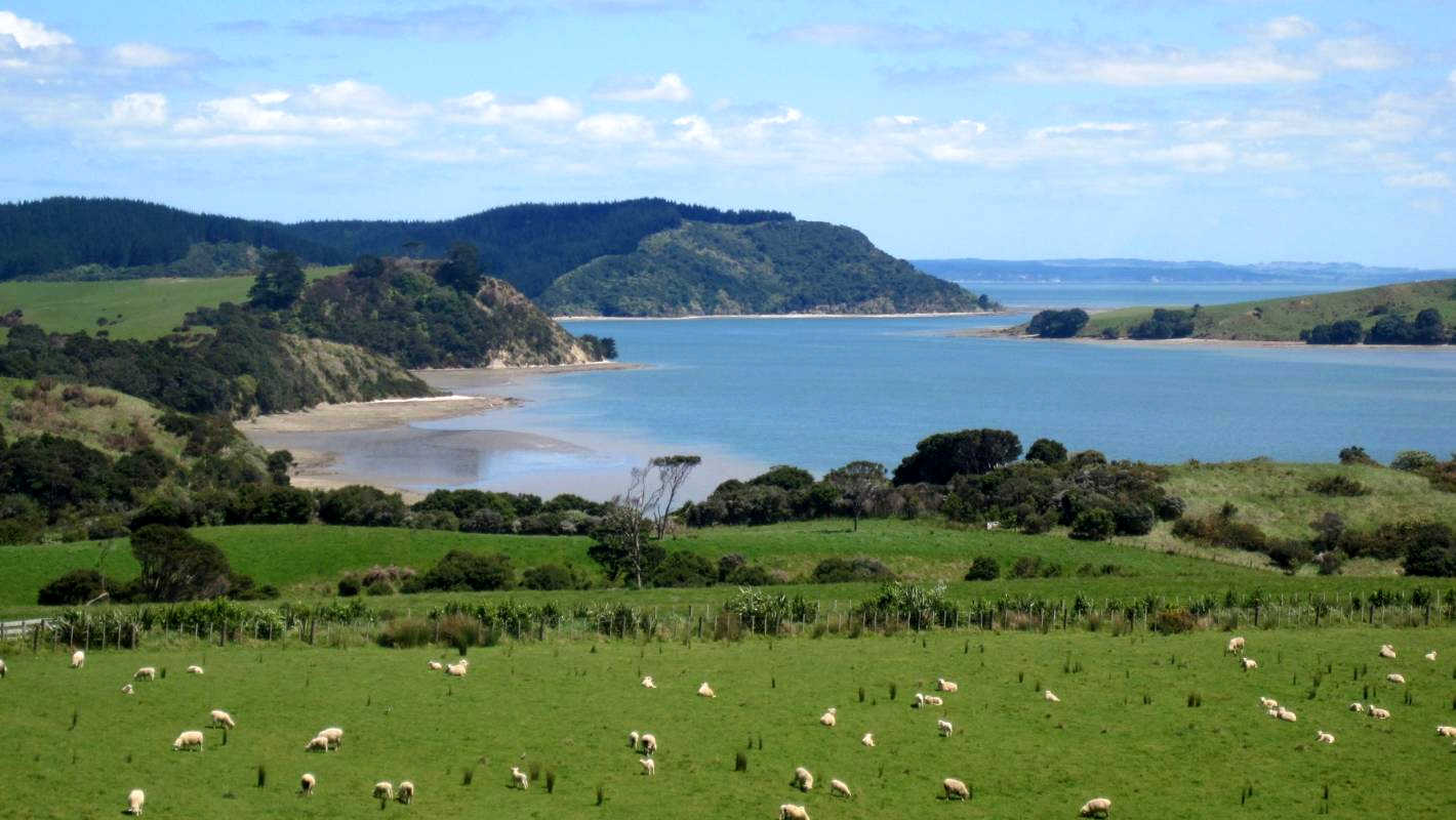 Atiu Creek Regional Park, Auckland, New Zealand @Stuff