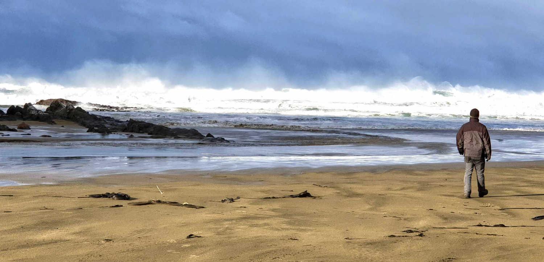Cannibal Bay Otago sealion territory, early winter,New Zealand