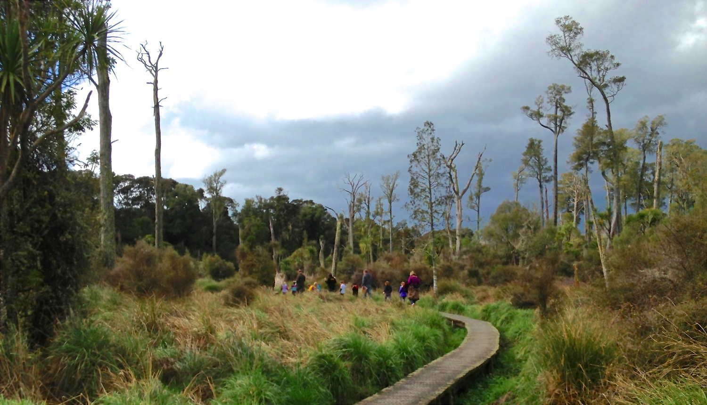 Carter Scenic Reserve @Carter Reserve15