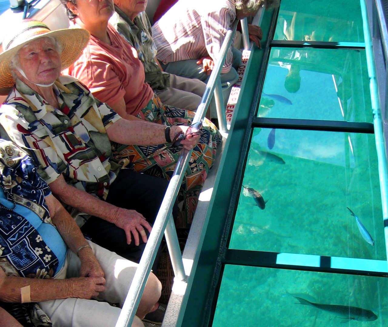 Glass Bottom boat excursion, Auckland, New Zealand @Aucklandnz