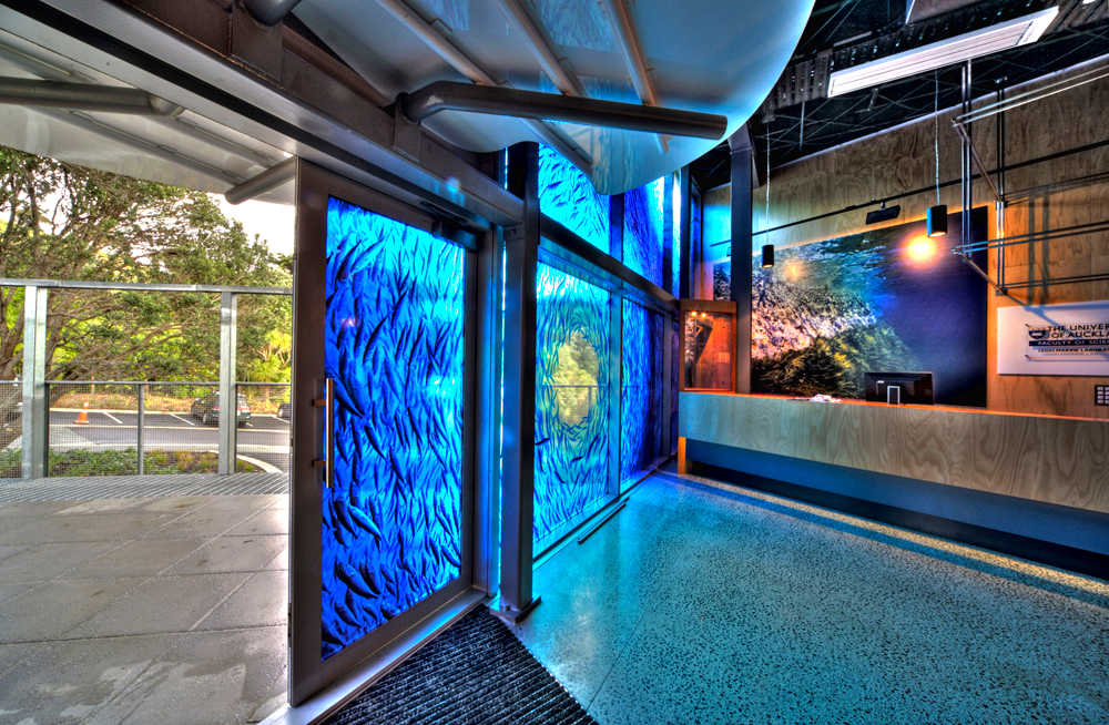 Goat Island Marine Discovery Centre, Auckland, New Zealand @EscapeToLeight