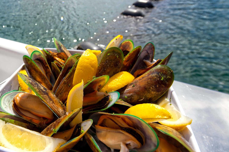 Greenshell mussels marlborough
