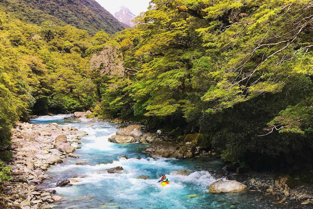 Hollyford River,New Zealand @carrot.and.greenpeas