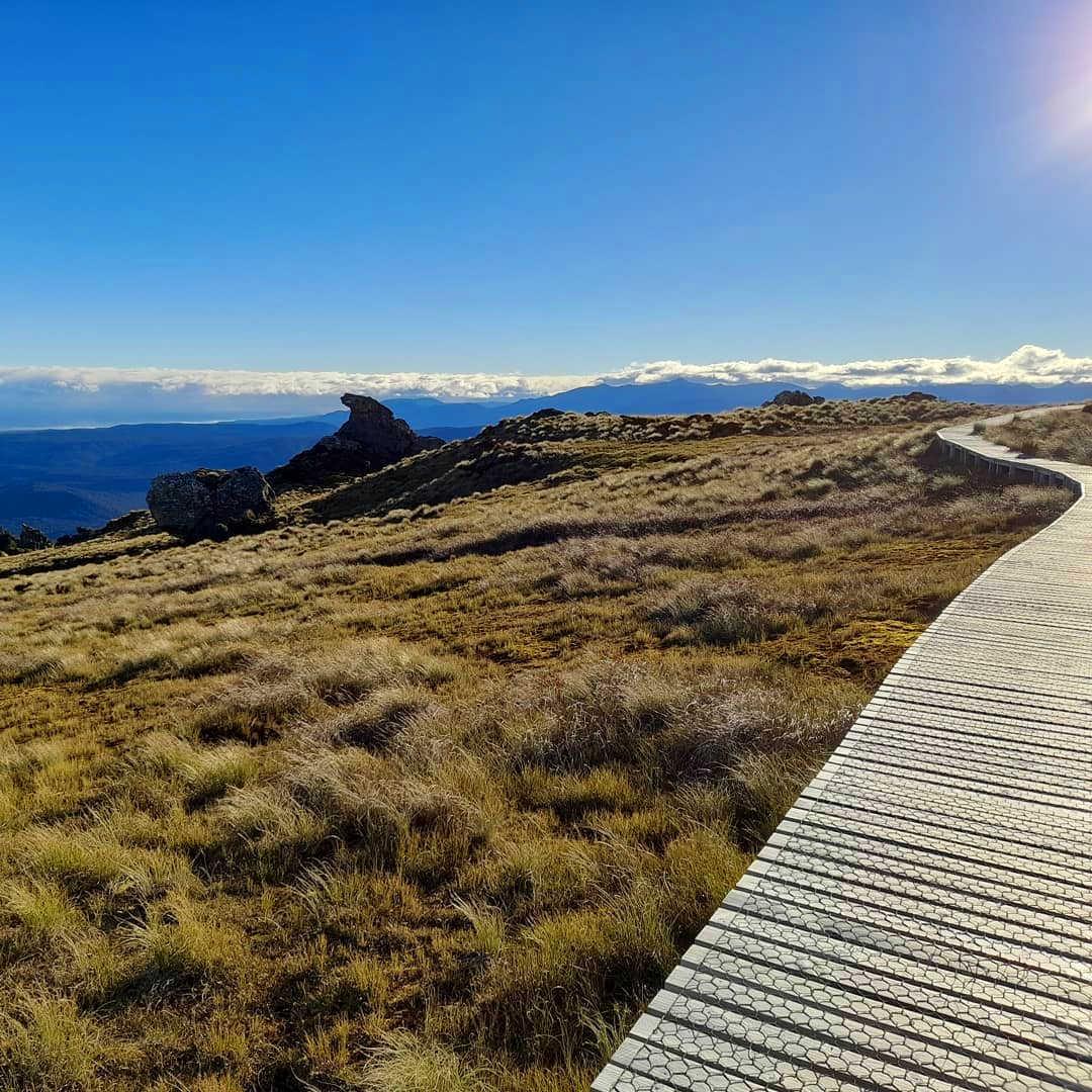 Hump Ridge Great Walk,New Zealand @sleepysash
