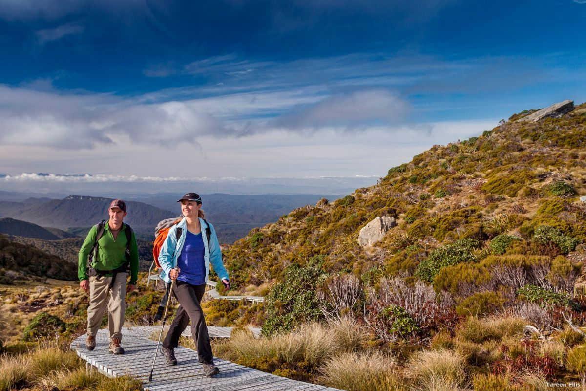 Hump Ridge Track,New Zealand @Tareen Ellis, Tourism New Zealand