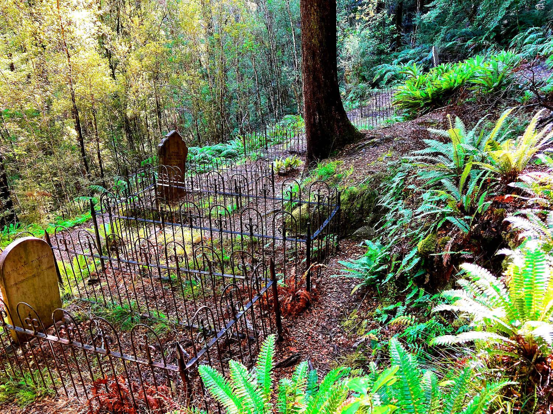Lyell Cemetery @WikimediaCommons