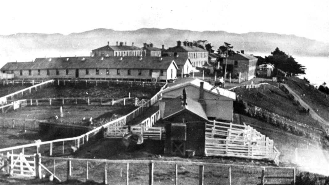 Matiu Somes Island, New Zealand @NZHistory