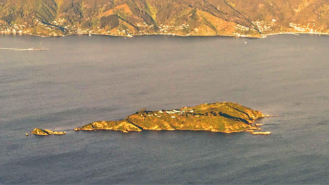 Matiu Somes Island aerial view, New Zealand