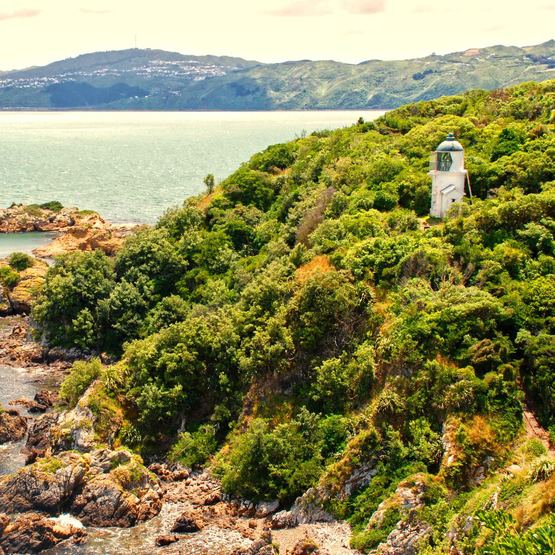 Matiu Somes Island views, New Zealand