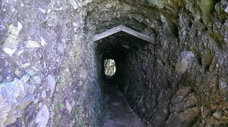 Miners Tunnel Track,New Zealand @GuestNewZealand