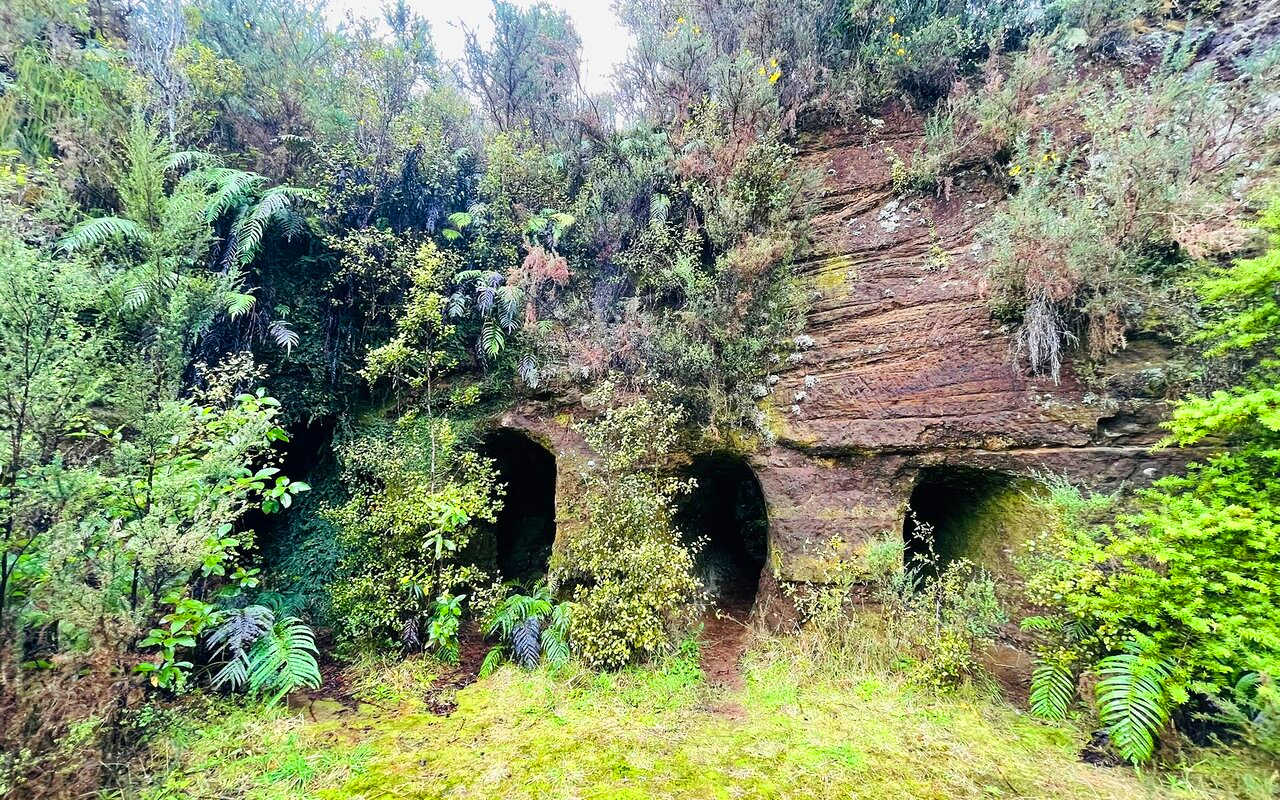 Mitchells Gully Gold Mine,New Zealand @Tripadvisor