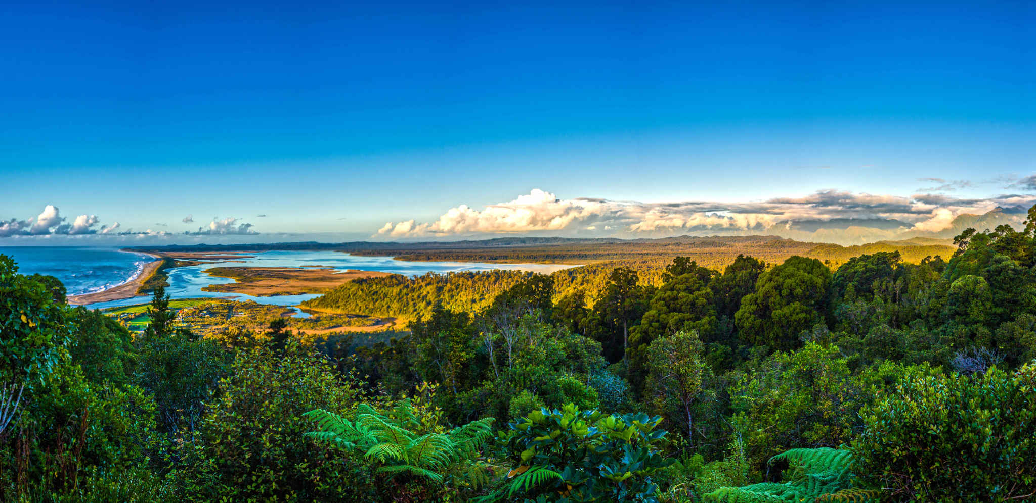 Okarito lookout from Trig Walk, New Zealand