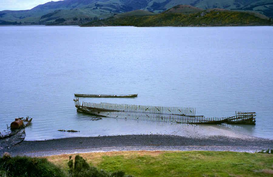 Ōtamahua Quail Island, New Zealand @NZHistory