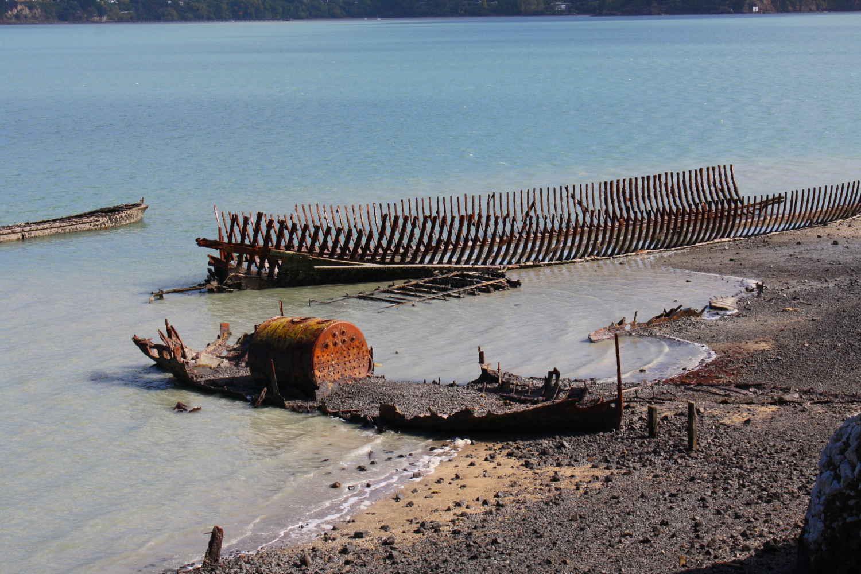 Ōtamahua Quail Island, New Zealand @WikimediaCommons