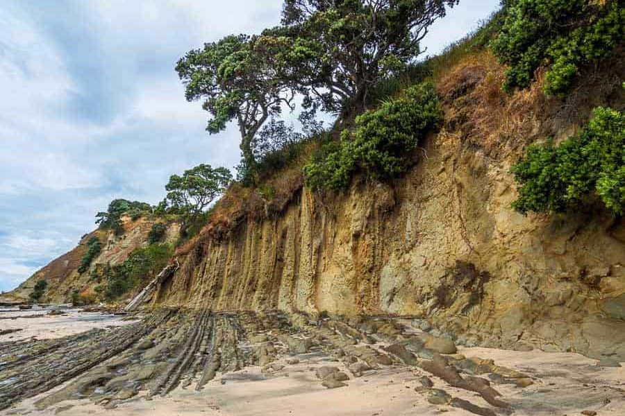 Pink Beach,New Zealand @Rhonda Albom