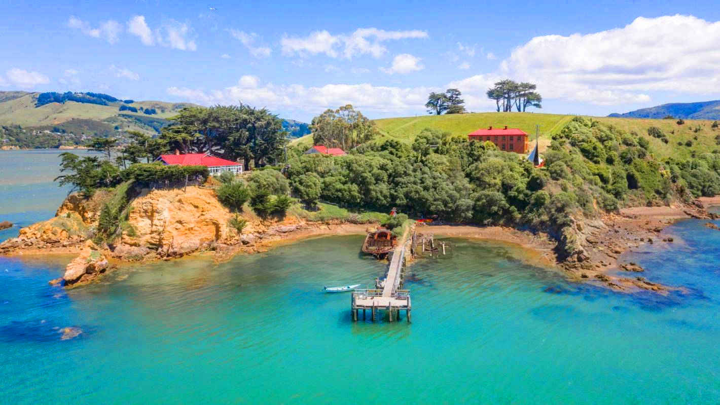 Quarantine Island Kamau Taurua, New Zealand @Stuff