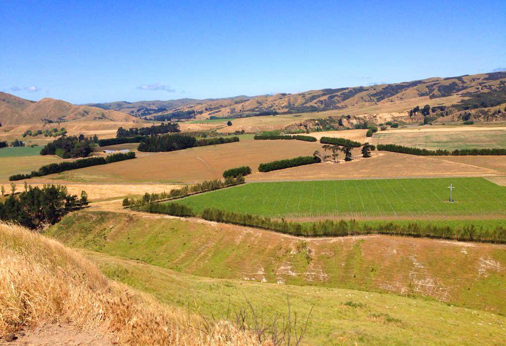 Rapaki walk,New Zealand @Deb Barker