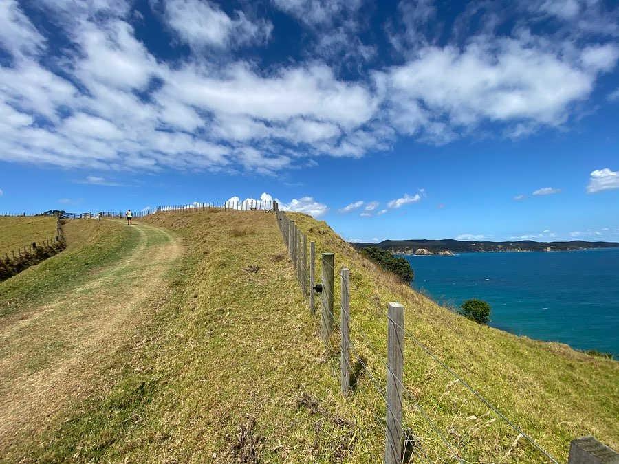 Tawharanui Peninsula,New Zealand @rach.manera