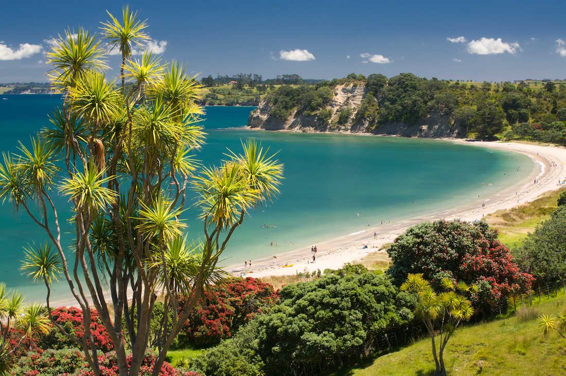Te Haruhi Bay at Shakespear Park,New Zealand @SCRIBBLESNZ