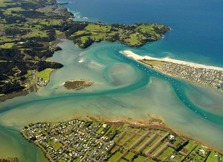 The Value of Mangroves in Whangateau Harbour, Auckland, New Zealand @whangateauharbour