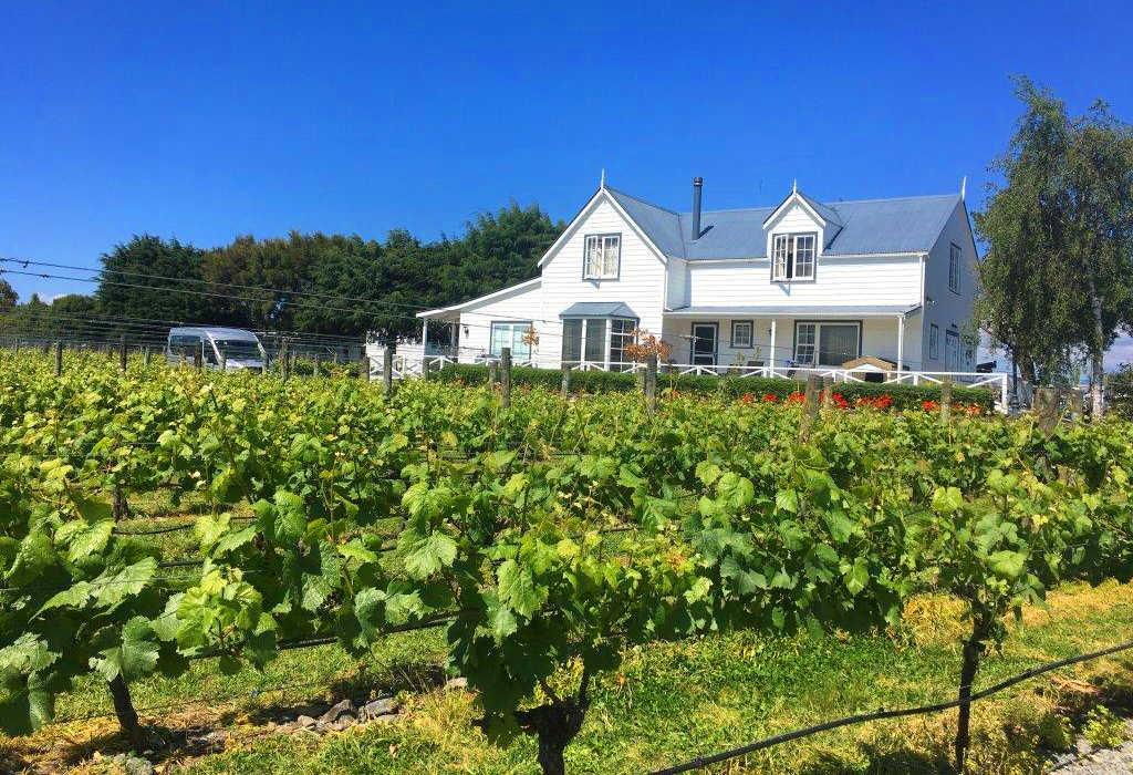 Tirohana Estate Vineyard,New Zealand @Christchurch info