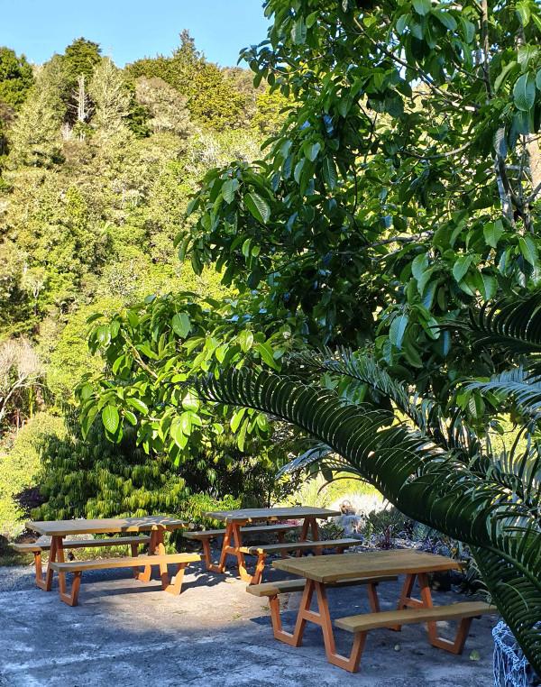 Whangarei Quarry Gardens picnic area, New Zealand