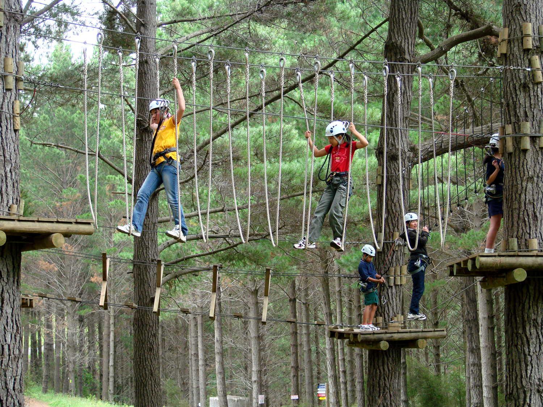 Woodhill Tree Adventures, Auckland, New Zealand @NZ Herald