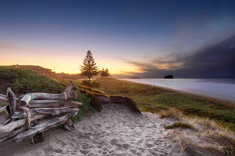 Driftwood bench seat on sand dunes overlooking Mount Maunganui Beach, New Zealand