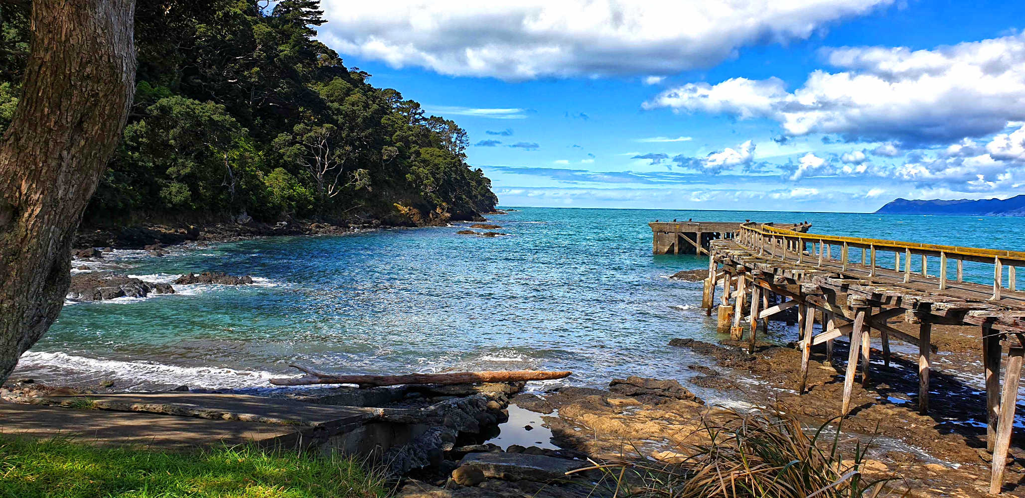 Hicks Bay, abandoned decaying wharf, East Cape, North Island,New Zealand