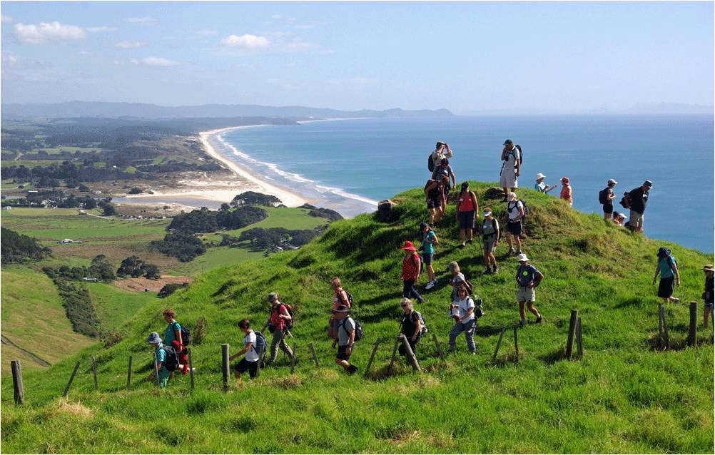 Mangawhai Cliff Walk @Mangawhai Walking Weekend