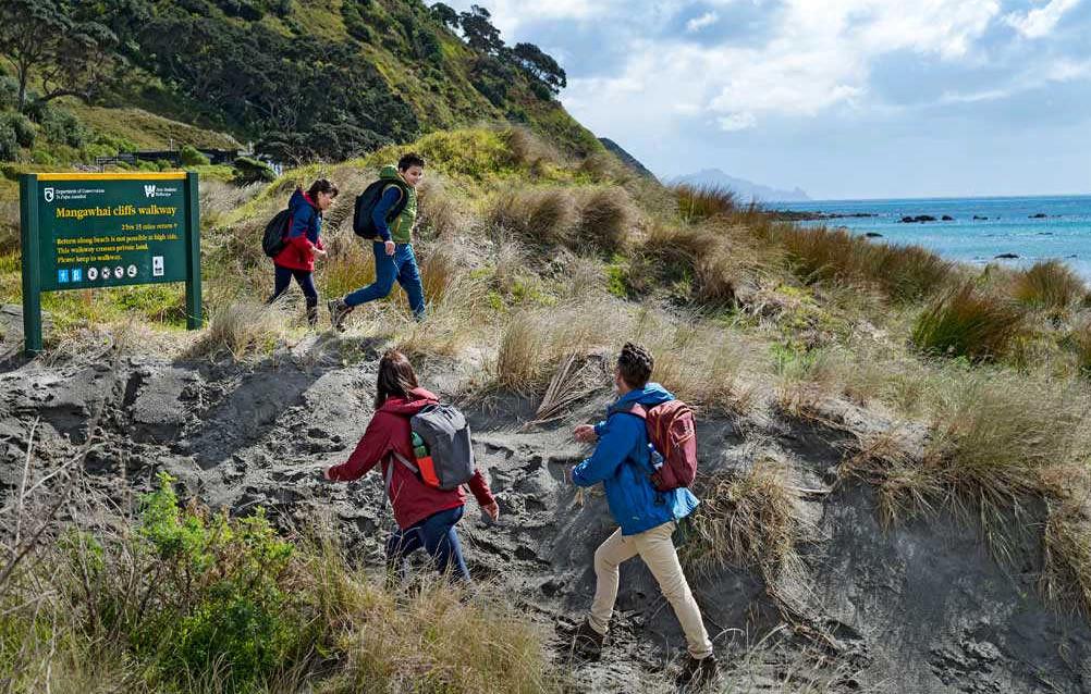 Mangawhai Cliffs Walkway @Department of Conservation